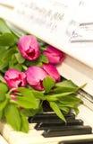 Rosa tulpan och anmärkningar rosa tulpan Fotografering för Bildbyråer