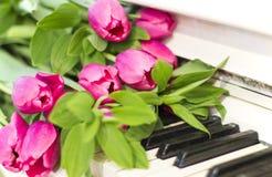 Rosa tulpan och anmärkningar rosa tulpan Royaltyfri Foto