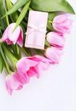 Rosa tulpan och gåvan boxas Royaltyfria Foton