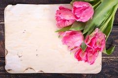 Rosa tulpan och tappning skyler över brister, ritar på en träbakgrund Fritt avstånd för din text Royaltyfria Bilder