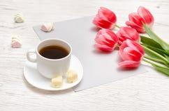 Rosa tulpan på ett tomt ark av papper, rånar av kaffe och marshmallower, ljus träbakgrund Arkivbilder
