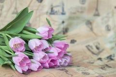 Rosa tulpan på tappningpapper, tidning Vårblommor, abstrakt romantisk blom- bakgrund med kopieringsutrymme Royaltyfria Bilder