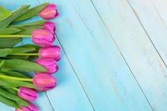 Rosa tulpan på träblå bakgrund Befruktningferie, mars 8, dag för moder` s Lekmanna- lägenhet och kopieringsutrymme Royaltyfria Foton