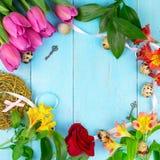 Rosa tulpan på träblå bakgrund Befruktningferie, mars 8, dag för moder` s Lekmanna- lägenhet och kopieringsutrymme Royaltyfria Bilder