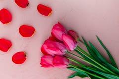 Rosa tulpan på vit beige stenbakgrund Top beskådar kopiera avstånd greeting lyckligt nytt år för 2007 kort Fotografering för Bildbyråer