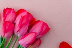 Rosa tulpan på vit beige stenbakgrund Top beskådar kopiera avstånd greeting lyckligt nytt år för 2007 kort Royaltyfri Bild