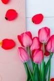 Rosa tulpan på vit beige stenbakgrund Top beskådar kopiera avstånd greeting lyckligt nytt år för 2007 kort Arkivbild