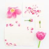 Rosa tulpan, rosor och pappers- kort för tappning som isoleras på vit bakgrund Lekmanna- lägenhet, bästa sikt Arkivfoton