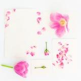 Rosa tulpan, rosor och pappers- kort för tappning som isoleras på vit bakgrund Lekmanna- lägenhet, bästa sikt Arkivbilder