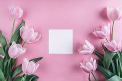 Rosa tulpanblommor och ark av papper över ljus - rosa bakgrund Sankt valentindagram eller bakgrund royaltyfria foton