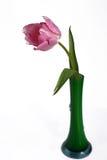rosa tulpanvase Arkivfoton