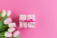 Pink tulips on pink background with gift box stock photos