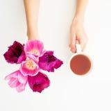 Rosa Tulpen und Teebecher lokalisiert auf weißem Hintergrund Ausführliche vektorzeichnung Flache Lage Beschneidungspfad eingeschl Lizenzfreies Stockfoto