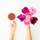 Rosa Tulpen und Teebecher lokalisiert auf weißem Hintergrund Ausführliche vektorzeichnung Flache Lage Beschneidungspfad eingeschl Lizenzfreie Stockbilder