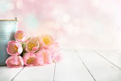 Pink tulip bouquet lying on white wooden planks stock photography