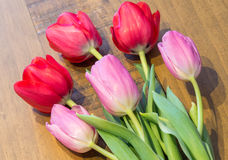 Rosa u. rote Tulpen auf eichenem Tisch lizenzfreies stockbild