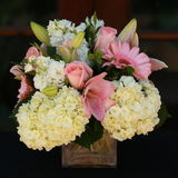 Rosa u. weiße Blumen-Anordnung Stockfotos