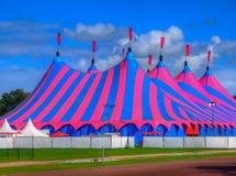 Rosa und blaues Zirkuszelt-Zirkus-Zelt Stockbilder
