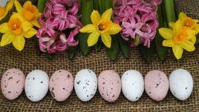 Rosa und gelbe Frühlingsblumen, farbige Eier, Ostersonntag Lizenzfreies Stockfoto
