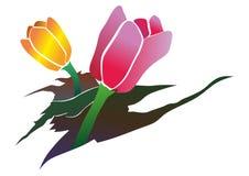 Rosa und gelbe Tulpen, die aus Sprüngen im Boden heraus wachsen Stockbilder