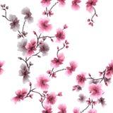 Rosa und graue Blumen des nahtlosen Musters des Aquarells auf einem weißen Hintergrund Stockfotos