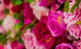 Rosa und purpurrote Rosen für romantischen Valentinsgruß-Tag lizenzfreies stockfoto