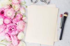 Rosa und weiße Ranunculusblumen Stockfoto