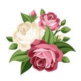 Rosa und weiße Weinleserosen. lizenzfreie abbildung