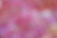 Rosa Unschärfe-Hintergrund - Natur-Fotos auf Lager Stockbild