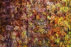 rosa vägg för tegelsten Fotografering för Bildbyråer