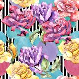Rosa variopinta Fiore botanico floreale Modello senza cuciture del fondo Struttura della stampa della carta da parati del tessuto illustrazione di stock