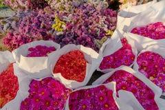 Rosa variopinto e mazzi rossi del fiore del crisantemo avvolti in Libro Bianco ed altri fiori di inverno fotografie stock libere da diritti