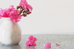 rosa vase för blommor Arkivbilder