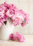 rosa vase för pioner Arkivbild