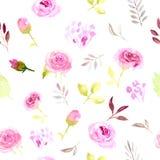 Rosa vattenfärgblommor för sömlös modell Royaltyfri Fotografi