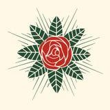 Rosa vektorstil Arkivbild