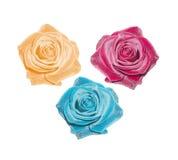 Rosa vektoruppsättning Royaltyfria Bilder