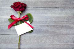Rosa vermelha bonita Imagens de Stock Royalty Free