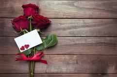 Rosa vermelha bonita Imagem de Stock Royalty Free
