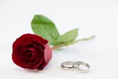 Rosa vermelha, contrata o anel com amor no dia de Valentim Imagem de Stock Royalty Free