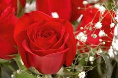 Rosa vermelha em um ramalhete imagens de stock royalty free