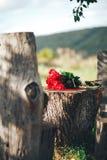 Rosa vermelha flores, anéis e decoração do casamento ruído romântico Foto de Stock