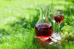 Rosa vin och druvor arkivbilder