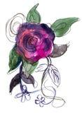 Rosa viola verniciata in acquerello Fotografie Stock