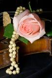 Rosa, violino, perle Fotografia Stock