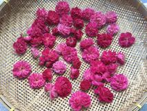 Rosa voll-blühte Damaskusrosen auf flachem Bambuskorb stockfoto