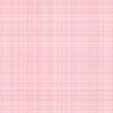 rosa white för kanfas royaltyfri illustrationer