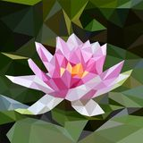 rosa white f?r lotusblomma royaltyfri illustrationer