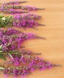 Rosa Wildflowers auf hölzernem Hintergrund Lizenzfreie Stockbilder