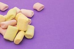 Rosa y amarillo con las melcochas Imágenes de archivo libres de regalías